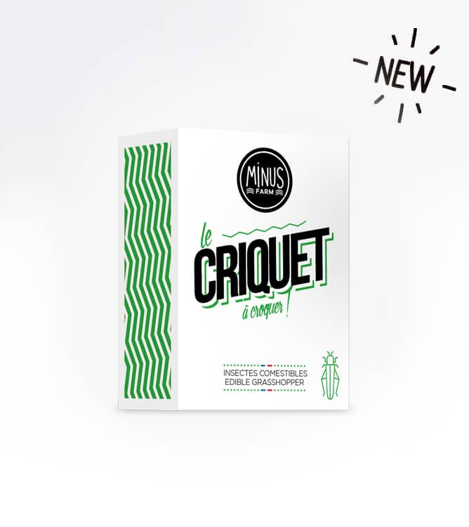 criquet_new